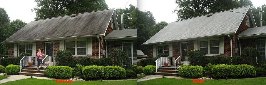 Soft wash roof washing Baltimore MD